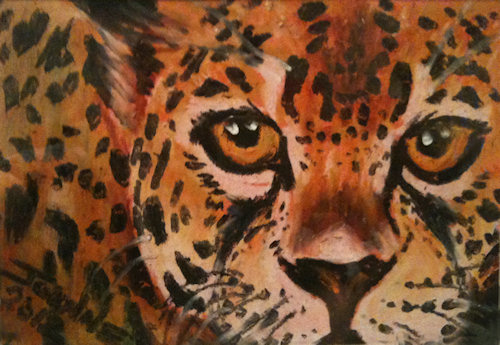 Cheetah Copyright Joanne Howard 2013